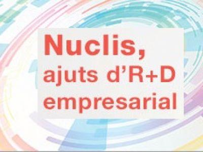 Ajuts Programa NUCLIS LOCALS I INTERNACIONALS UNILATERALS
