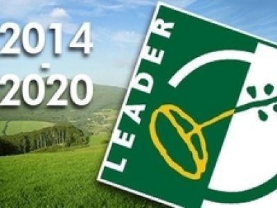 Ajuts del Programa LEADER per a zones rurals.