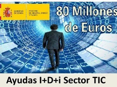 Ajuts en l'àmbit de les TIC i la Societat de la Informació